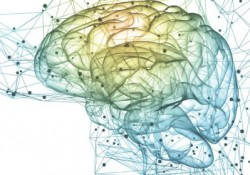 Brain Intentensive