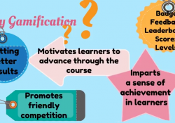 Project Work Digital Learning e Gamification
