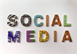 social media marketing project work master istud